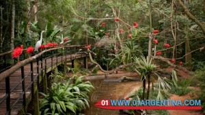 Bird Park in puerto iguazu
